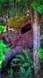 Camion abbandonato Immagini Stock Libere da Diritti