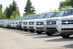 Camion alla gestione commerciale Immagine Stock