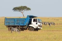 Camion conduisant sur la savane Photos stock