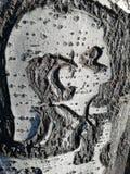 Camion d'arbre photographie stock libre de droits