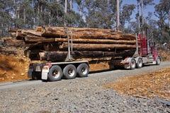 Camion de logarithme naturel Photo stock
