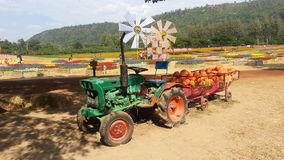 Camion de potiron chez Jim Thompson Farm Photos libres de droits