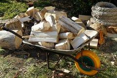 Camion del legname Immagini Stock