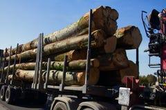 Camion del legname con il carico dei tronchi di albero fotografia stock libera da diritti