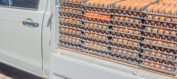 Camion dell'uovo Fotografia Stock