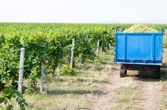 Camion dell'uva fotografia stock