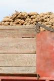 Camion della patata Fotografia Stock Libera da Diritti