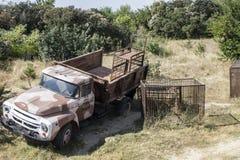 Camion per il trasporto dei leoni parco taigan Fotografie Stock Libere da Diritti