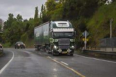 Camion sulla strada un giorno piovoso Fotografia Stock Libera da Diritti