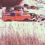 Camiones abandonados del vintage Foto de archivo