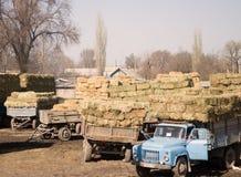 Camions agricoles avec le foin de l'année dernière Images libres de droits