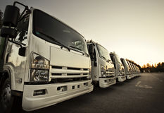 Camions dans une ligne Image stock