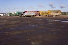 Camions de train routier attendant des bétail Photographie stock