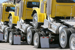 Camions jaunes Image stock