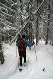Camisa azul, caminhantes do snowshoe foto de stock royalty free