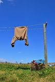 Camisa de Brown en la línea de ropa, Nueva Zelanda Foto de archivo libre de regalías