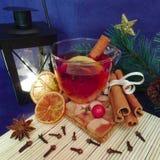 Camiseta de la Navidad del invierno con la naranja, el limón y el canela Imágenes de archivo libres de regalías