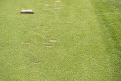 Camiseta del área en campo de golf Imágenes de archivo libres de regalías