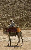 A cammel-rider in front of the Great pyramid Royalty Free Stock Photography