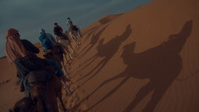 Cammelli che guidano in Sahara Desert fotografia stock