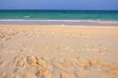 Cammelli su una spiaggia della Doubai Fotografia Stock Libera da Diritti