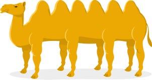 Cammello con sei gobbe royalty illustrazione gratis