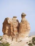 Cammello della pietra, Turchia Immagine Stock