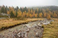 Camminando all'autunno in un giorno nuvoloso accanto ad una torrente montano Immagine Stock Libera da Diritti