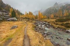 Camminando all'autunno in un giorno nuvoloso accanto ad una torrente montano Immagini Stock Libere da Diritti