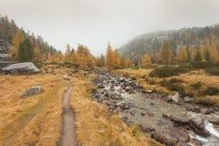Camminando all'autunno in un giorno nuvoloso accanto ad una torrente montano Fotografia Stock