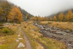 Camminando all'autunno in un giorno nuvoloso accanto ad una torrente montano Fotografia Stock Libera da Diritti