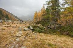 Camminando all'autunno in un giorno nuvoloso in una valle della montagna Fotografie Stock