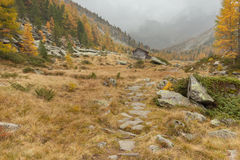 Camminando all'autunno in un giorno nuvoloso in una valle della montagna Immagine Stock