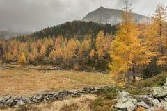 Camminando all'autunno in un giorno nuvoloso in una valle della montagna Fotografia Stock Libera da Diritti