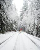 Camminando attraverso la foresta innevata con un ombrello rosso fotografia stock