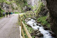 Camminando attraverso le gole di Sottoguda, dolomia Immagine Stock