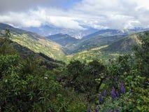Camminando attraverso una valle aperta lungo la traccia di Salkantay sul fotografia stock