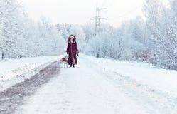 Camminando con il cane immagini stock libere da diritti