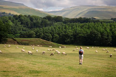 Camminando in Cumbria Fotografia Stock