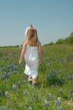 Camminando in fiori Immagini Stock