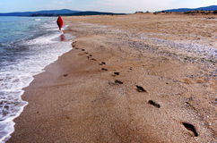 Camminando giù la spiaggia Fotografie Stock Libere da Diritti
