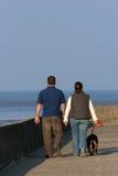 Camminando il cane. immagine stock libera da diritti