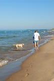 Camminando il cane, lago Michigan Fotografia Stock