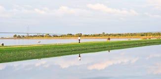 Camminando il cane: simmetria della nube! Immagini Stock Libere da Diritti