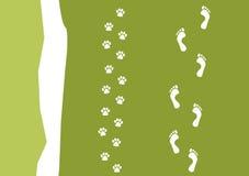 Camminando il reticolo del cane Fotografia Stock