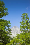 Camminando intorno al lago Sils (Svizzera) Immagini Stock Libere da Diritti