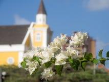 Camminando intorno a Petermaai - chiesa e fiori Immagini Stock Libere da Diritti