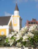 Camminando intorno a Petermaai - chiesa e fiori Immagine Stock