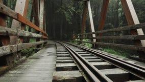 Camminando lungo il vecchio ponte ferroviario nella foresta di area scenica di Alishan con foschia, foschia e nebbia vista di pro video d archivio