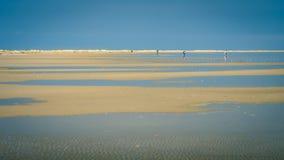 Camminando lungo la linea costiera di Schiermonnikoog sui Paesi Bassi summerday Immagini Stock